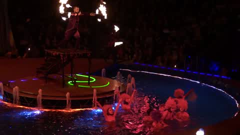 Ukrainian National Circus presents new show
